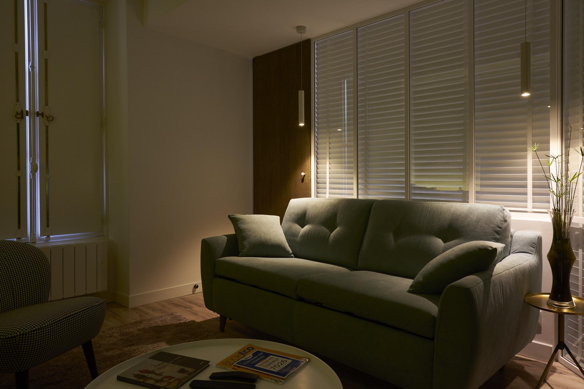 Salon - Ambiance - Appartement - Bordeaux - Thierry Pousset - Photographe professionnel - Design - photo immobilière