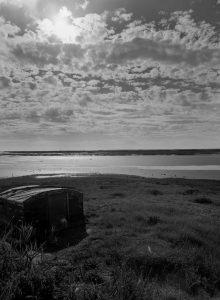 Argentique - Film - Ilford - Thierry Pousset - Photographe professionnel - Bordeaux