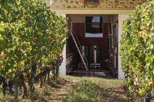 Domaine viticole - Vigne - Reportage photo - Thierry Pousset - Château - Gironde - Nouvelle aquitaine - Bordeaux
