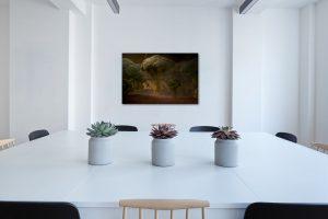 Salle de réunion - Tableau artistique - Impression d'art - Thierry Pousset - photographe professionnel à Bordeaux